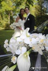 Hochzeiten006.jpg